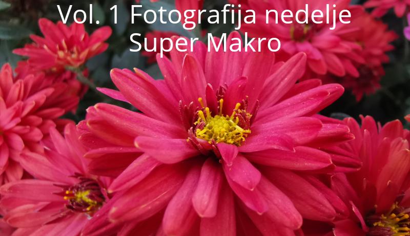 [Vol. 1 - Fotografija nedelje ] - Super Makro